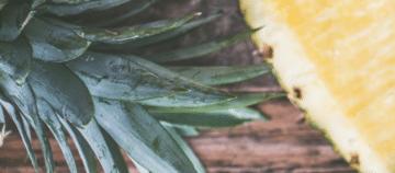 coeur-allege-ananas-josephdesign-tatirose